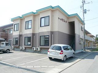 アパート 岩手県 胆沢郡金ケ崎町 西根鑓水 コーポセレナ 1K